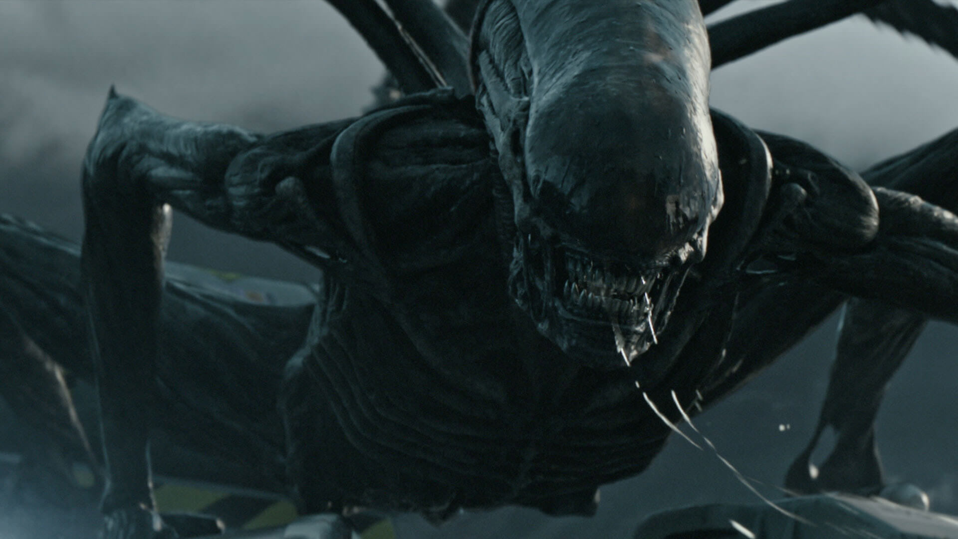 Guide to 'ALIEN: COVENANT'