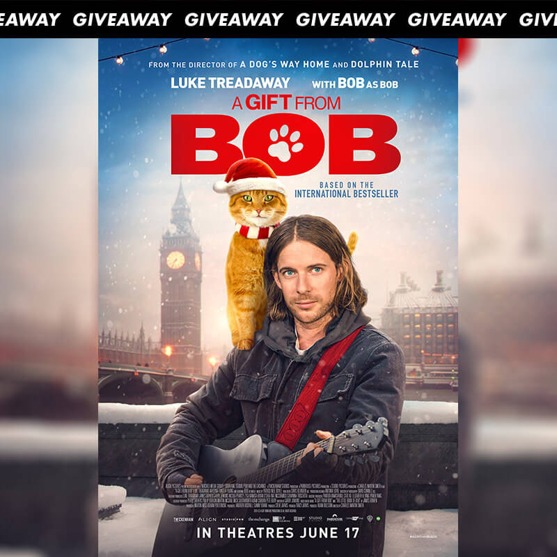 Win Complimentary Passes to Family Drama A Gift From Bob