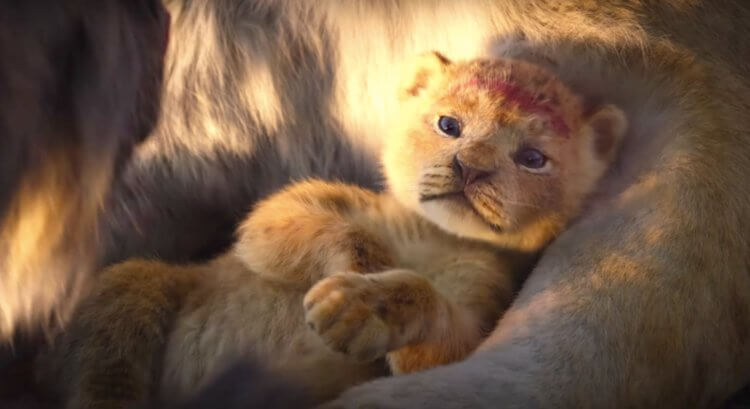 Why Scar's New Look In The Lion King Remake Is A Good Thing