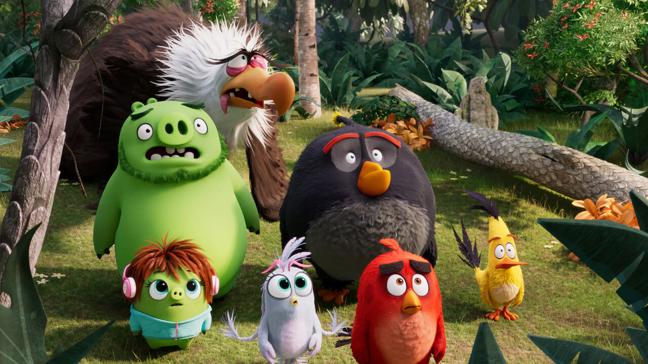 Get To Know Your Angry Birds!
